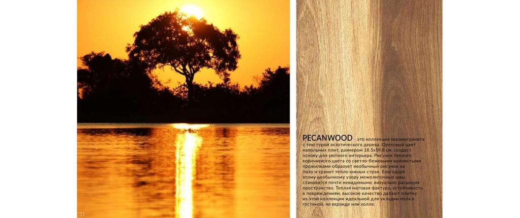 Pecanwood / Пеканвуд