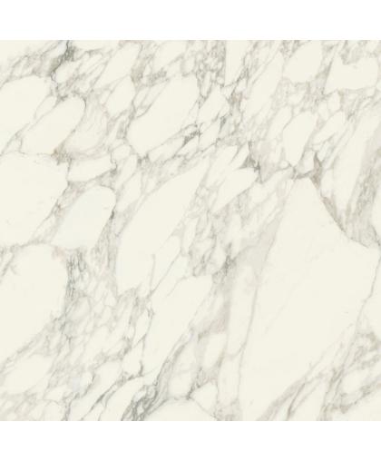 Шарм Делюкс / Charme Deluxe Arabescato White RT 800 х 800 (под заказ)