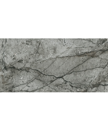 Иссэншэл / Essential Grey Polished RT 1198 х 598 (под заказ)