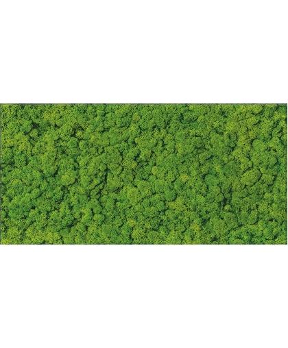 Фреш Мос / Fresh Moss Glass Inserto 590 x 290