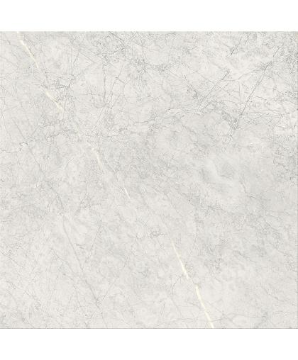 Стоун Парадис / Stone Paradise Light Grey Matt 593 x 593