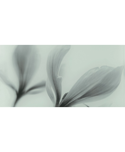 Glass Inserto Flower 448 x 223 (под заказ)