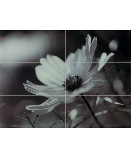 Glass Inserto Flower 898 x 673 (под заказ)